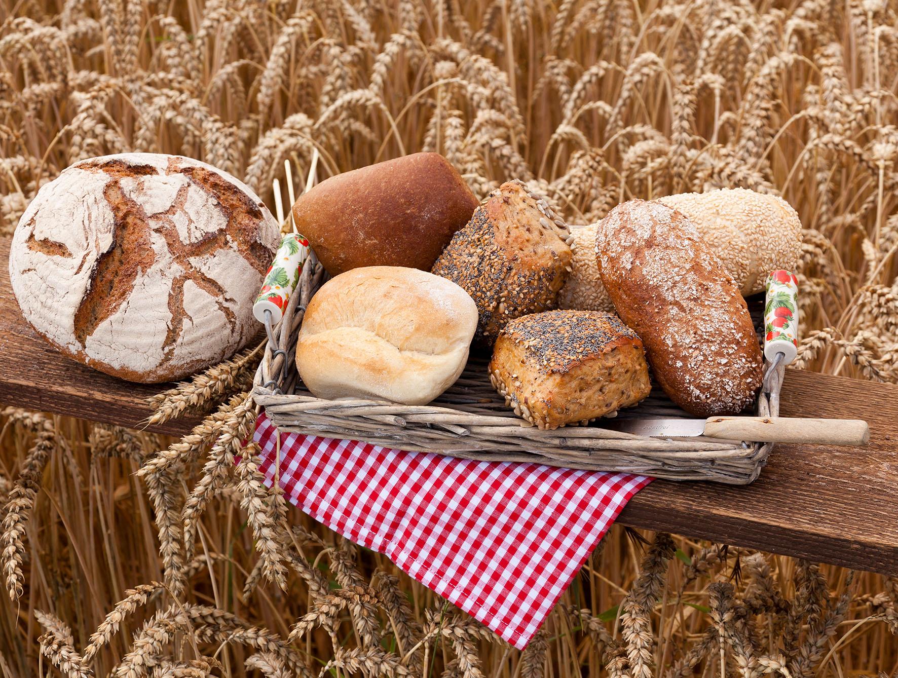 Brot- und Brötchenprüfung – Jetzt geht es nach Segeberg